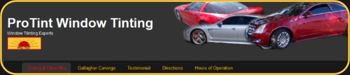 protintwindowtinting.com